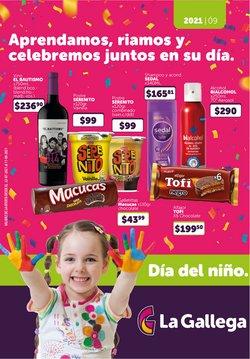 Catálogo La Gallega Supermercados ( Publicado ayer)