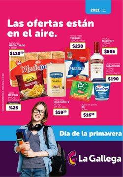 Catálogo La Gallega Supermercados ( 2 días más)