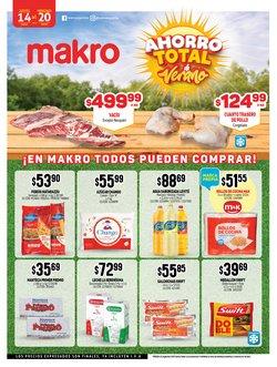 Catálogo Makro ( Caduca mañana )