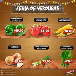 Catálogo Supermercados Mayor ( Caducado )