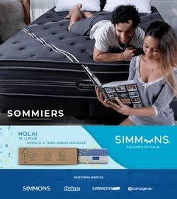 Catálogo Simmons ( Publicado hoy)