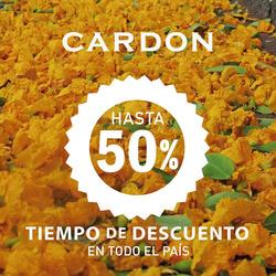 Ofertas de Cardon  en el folleto de Buenos Aires