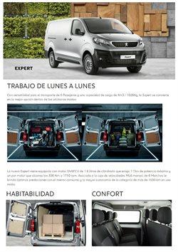 Catálogo Peugeot ( Más de un mes)