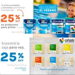 Ofertas de Cañada Pinturerías en el catálogo de Cañada Pinturerías ( Vence mañana)