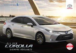 Ofertas de Autos, Motos y Repuestos en el catálogo de Toyota en Villa Rosa ( Más de un mes )