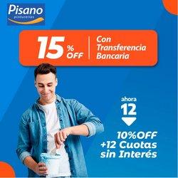 Ofertas de Ferreterías y Jardín en el catálogo de Pinturerías Pisano ( 14 días más)