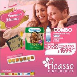 Ofertas de Ferreterías y Jardín en el catálogo de Pinturerías Picasso ( Vence hoy)
