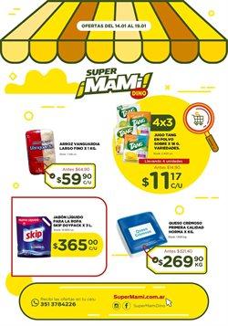 Catálogo Super Mami ( Caduca hoy )