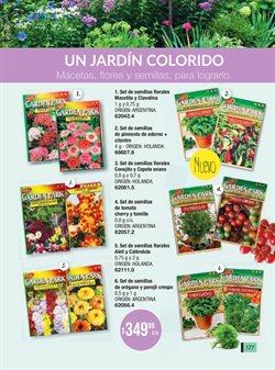 Ofertas de Tomates en Tsu Cosméticos