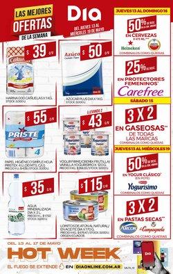 Catálogo Supermercados DIA ( Publicado hoy)