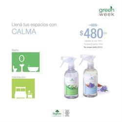 Ofertas de Té verde en Biogreen
