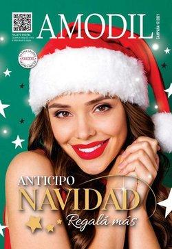 Ofertas de Perfumería y Maquillaje en el catálogo de Amodil ( Más de un mes)