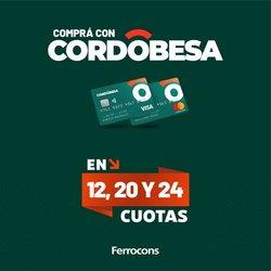 Ofertas de Ferreterías y Jardín en el catálogo de Ferrocons ( 8 días más)