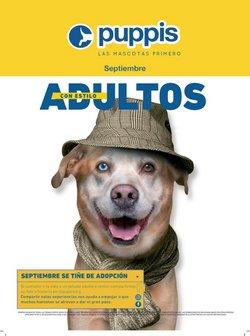 Ofertas de Puppis en el catálogo de Puppis ( 3 días más)