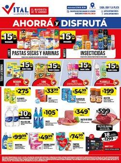 Ofertas de Hiper-Supermercados en el catálogo de Supermayorista Vital en Lanús ( Publicado ayer )
