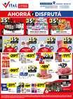Catálogo Supermayorista Vital en Corrientes ( Caduca hoy )