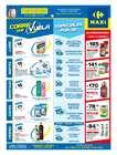 Catálogo Carrefour Maxi ( Publicado hoy )