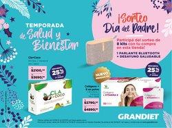 Catálogo Grandiet ( 20 días más)