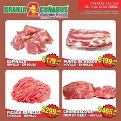 Catálogo Granja 2 Cuñados en Buenos Aires ( Caducado )