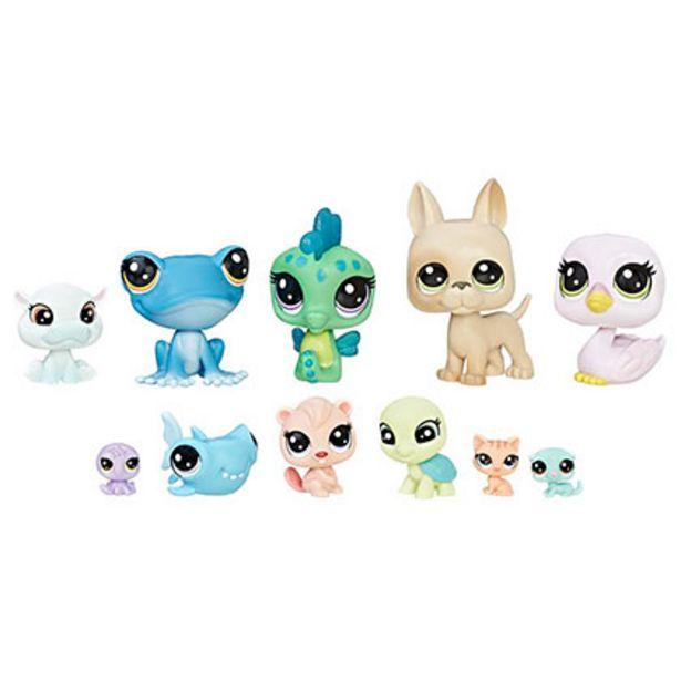 Oferta de Juguete Hasbro Little Pet Shop B9343/C1673 Cabin Crew por $1999