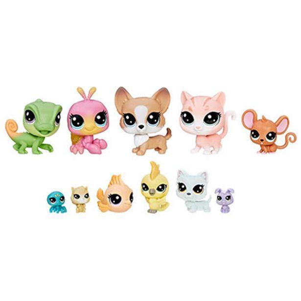 Oferta de Juguete Hasbro Little Pet Shop B9343/C1674 House Pets por $2469