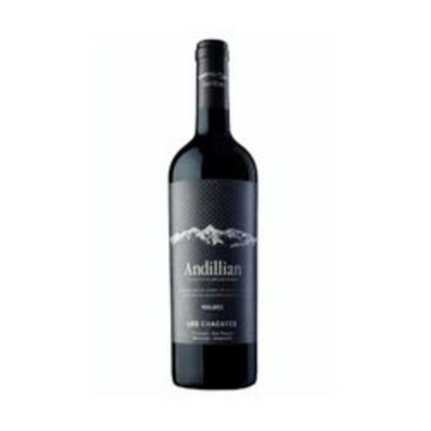 Oferta de Vino La Coste de los Andes Andillian Malbec Chacayes 750 ml x 6 por $4750