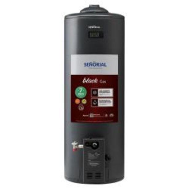 Oferta de Termotanque a Gas Señorial TSBG-110 110Lt por $37249