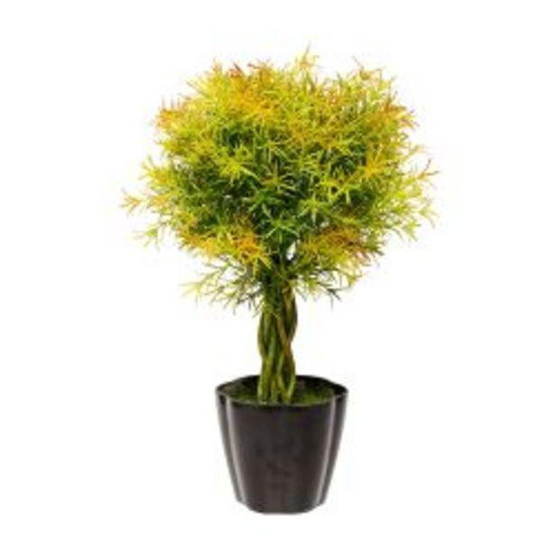 Oferta de Planta Decorativa Topiario Helecho Artificial 61 cm por $9990