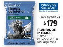 Oferta de Plantas de interior por $179