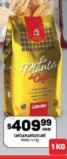 Oferta de Cafe molido La planta de Café 1kg por $409,99