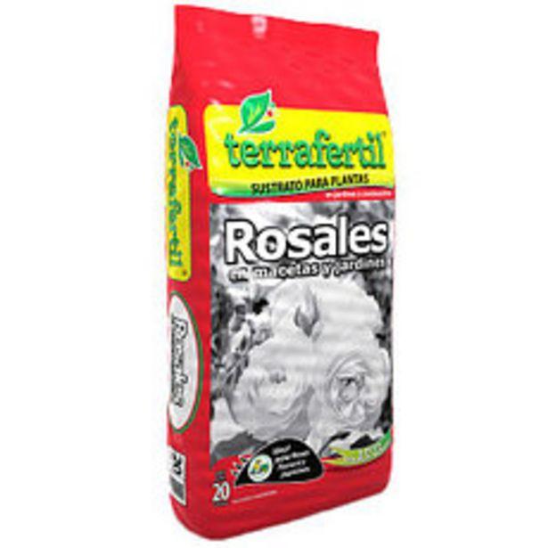 Oferta de Rosales 20 Lts por $743,4