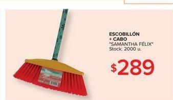Oferta de Escobillon + cabo  por $289