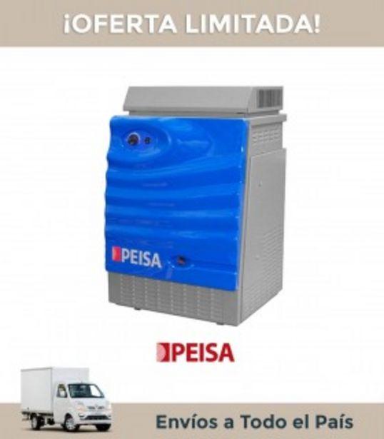Oferta de Caldera Peisa Tx 40 Gn 32.400 Ch Tn Piscina (exterior) C82000 por $197845