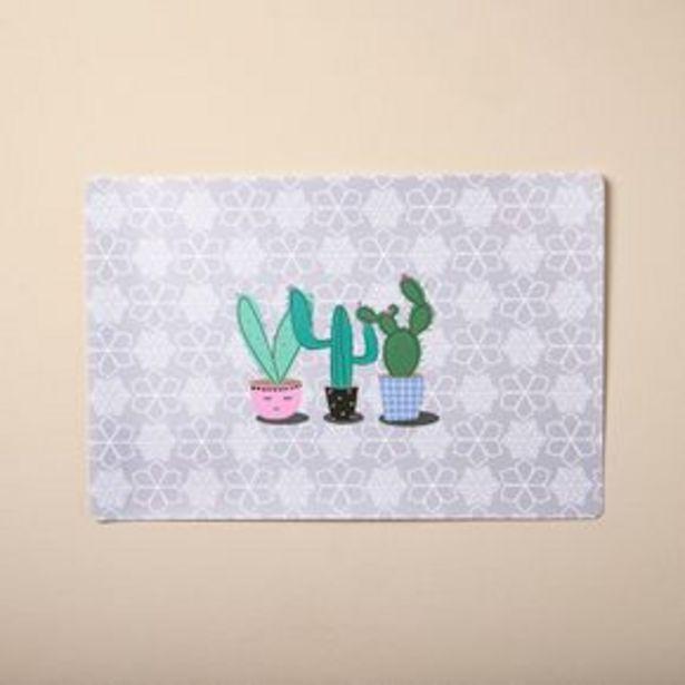 Oferta de Individual Cactus Variados por $160,3