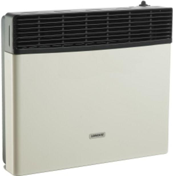 Oferta de Calefactor Tiro Balanceado Bigas 5000 Kcal EBA5S LONGVIE por $29999