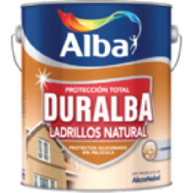 Oferta de Duralba Ladrillos Sin Pelicula 4 L por $5635,83